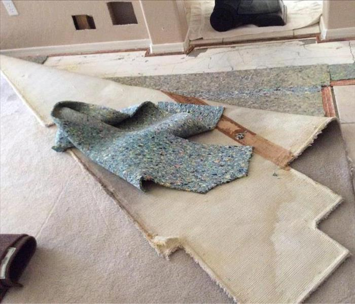 Water Leak Destroyed Family Room Carpet