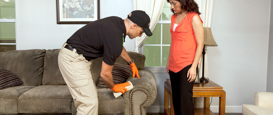 Gilbert, AZ carpet upholstery cleaning
